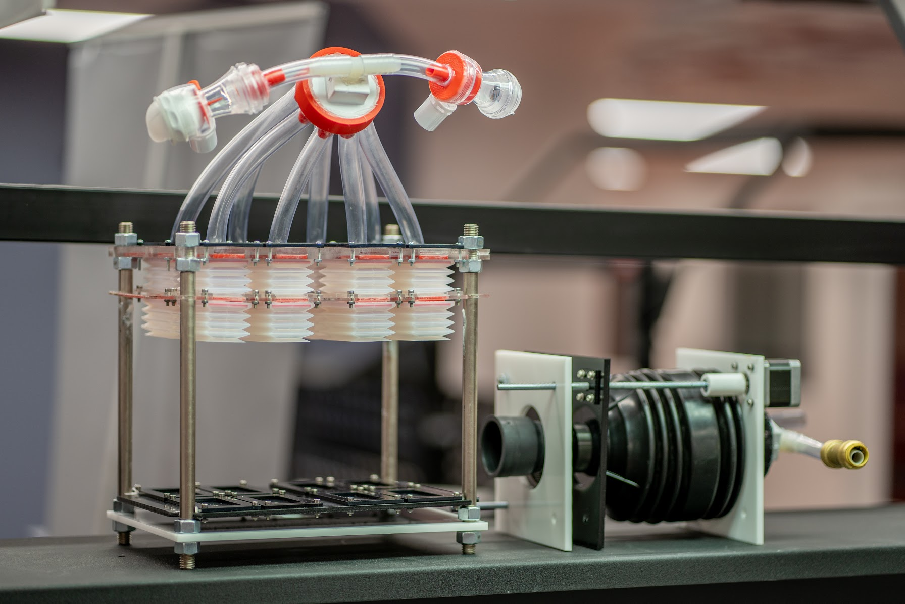 Ventilator Production: A Global Need